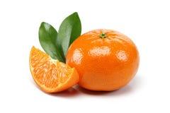 Groupe de mandarine Photographie stock libre de droits
