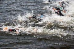 Groupe de nageurs Images libres de droits