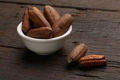 Groupe de noix de pécan dans un arc Images stock