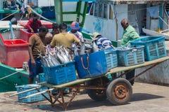 Groupe de pêcheurs aux poissons de chargement de port dans les paniers photo stock