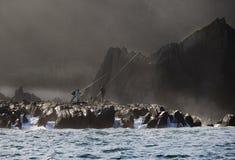 Groupe de pêcheurs pêchant sur les roches Images stock