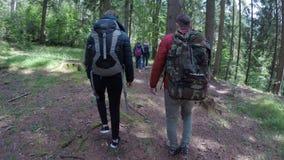 Groupe de personnes d'écologiste marchant sur un trekking de traînée de montagne et appréciant le paysage vert de forêt - banque de vidéos