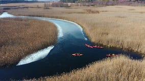 Groupe de personnes dans des kayaks parmi des roseaux sur la rivi?re d'automne banque de vidéos