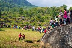 Groupe de personnes de Toraja sur le gisement de riz Photo libre de droits