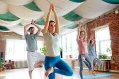Groupe de personnes faisant la pose d'arbre de yoga au studio Photo stock