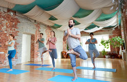Groupe de personnes faisant la pose d'arbre de yoga au studio Photo libre de droits
