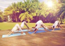 Groupe de personnes faisant yoga le chien poser dehors Image libre de droits