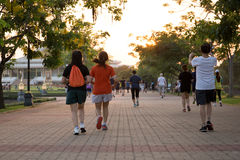 Groupe de personnes s'exerçant en parc Images libres de droits