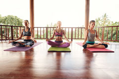 Groupe de personnes yoga de pratique Photographie stock libre de droits