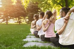 Groupe de personnes yoga de pratique en parc Photographie stock libre de droits