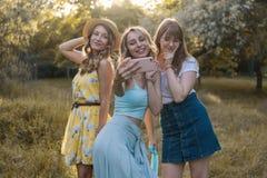 Groupe de photo de selfie de prise d'amies Images libres de droits