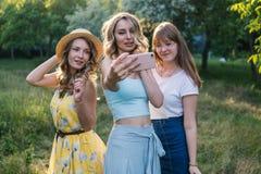 Groupe de photo de selfie de prise d'amies Photographie stock libre de droits