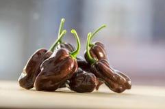 Groupe de piments mûris de chinenses de poivron très sur la table en bois, chocolat de Habanero photo libre de droits