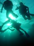 Groupe de plongeurs Photo stock