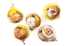 Groupe de poires putréfiées Photographie stock libre de droits