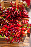 Groupe de poivre de piment d'un rouge ardent au marché Image stock
