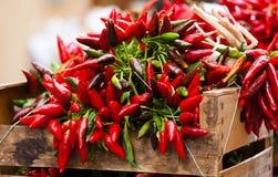 Groupe de poivre de piment d'un rouge ardent au marché Photo libre de droits