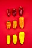 Groupe de poivrons Images stock