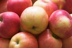 Groupe de pommes Image stock