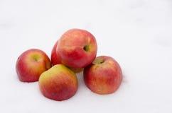 Groupe de pommes rouges dans une neige fraîche Photos libres de droits