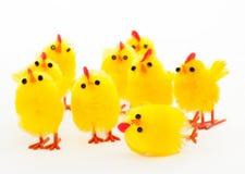 Groupe de poulets de Pâques et l'amorce tombée Images libres de droits