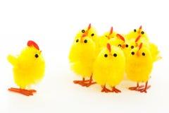 Groupe de poulets de Pâques et une amorce Image libre de droits