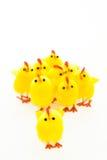 Groupe de poulets de Pâques et une amorce Photographie stock libre de droits