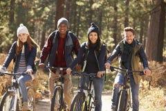 Groupe de quatre amis sur des vélos dans une forêt regardant à l'appareil-photo Photographie stock libre de droits