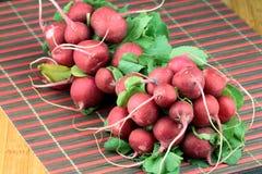 Groupe de radis frais Photographie stock libre de droits