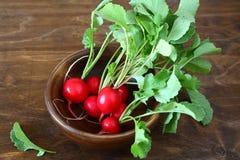 Groupe de radis frais dans une cuvette Photo stock