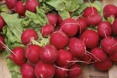 Groupe de radis rouge mûr photos libres de droits