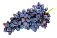 Groupe de raisins. Photos libres de droits