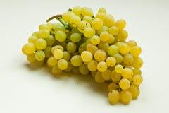 Groupe de raisins Photo stock