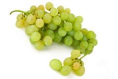 Groupe de raisins blancs Photos stock