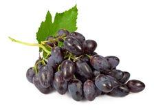 Groupe de raisins bleus Images stock