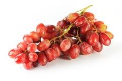 Groupe de raisins rouges Images libres de droits