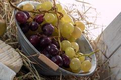Groupe de raisins rouges et blancs sur la paille image stock
