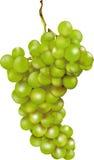 Groupe de raisins vert Photo stock