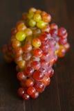 Groupe de raisins verticaux Images stock