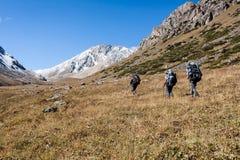 Groupe de randonneurs en montagnes Images libres de droits
