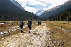 Groupe de randonneurs en montagnes Photo stock