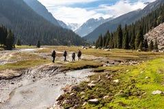 Groupe de randonneurs en montagnes Photographie stock