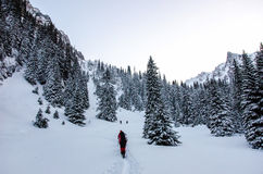 Groupe de randonneurs en montagnes carpathiennes images stock