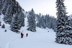 Groupe de randonneurs en montagnes carpathiennes images libres de droits