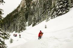 Groupe de randonneurs en montagnes carpathiennes photographie stock libre de droits