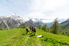 Groupe de randonneurs explorant les Alpes, activités en plein air en été Image stock