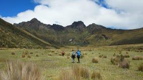 Groupe de randonneurs marchant au milieu de la vallée en direction du volcan de Ruminahui à l'intérieur du parc national du Cotop Images libres de droits