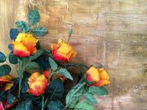 Groupe de rose de rouge avec le fond de mur de vintage, conception grunge Photographie stock