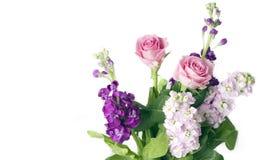 Groupe de roses et de stocks roses image libre de droits