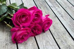 Groupe de roses roses image libre de droits